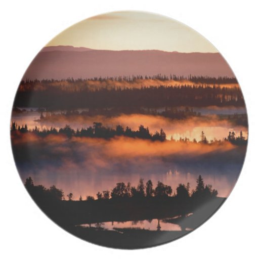 Forest Misty Valley Dinner Plates