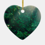 Forest Monteverde Cloud Costa Rica Christmas Ornaments