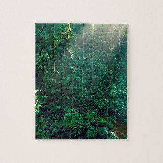Forest Monteverde Cloud Costa Rica Puzzle