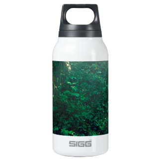 Forest Monteverde Cloud Costa Rica SIGG Thermo 0.3L Insulated Bottle