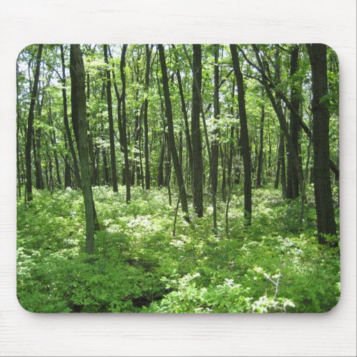 Forest Mouse Pads