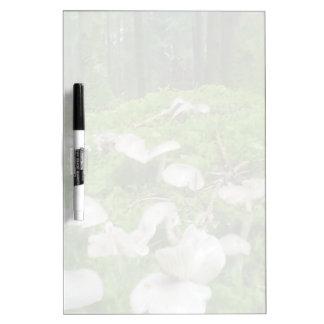 Forest mushroom dry erase board