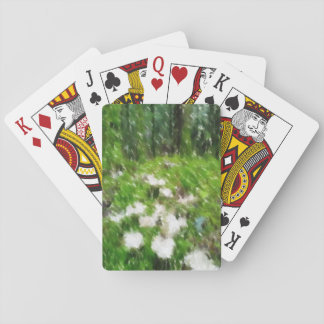 Forest mushroom edited photo card decks
