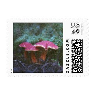 Forest Mushroom Stamps