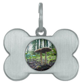 Forest Mushrooms Pet Name Tags
