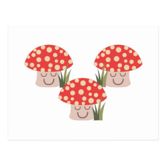 Forest Mushrooms Postcard