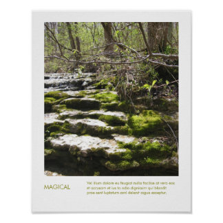 Forest Nature Photography Inspirational Quote Posters