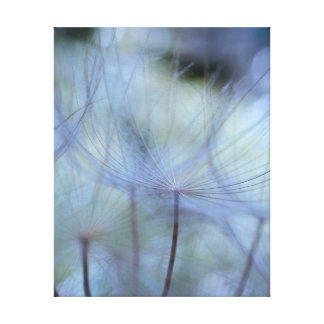 Forest of akenes canvas prints