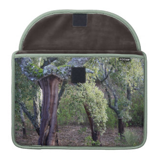 Forest of cork oaks or cork trees sleeve for MacBooks