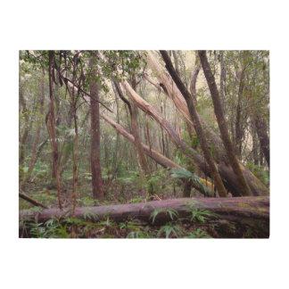 Forest of Fallen Eucalyptus Trees Wood Wall Art