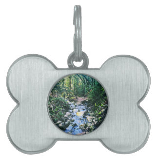 Forest of Nisene Pet Tag