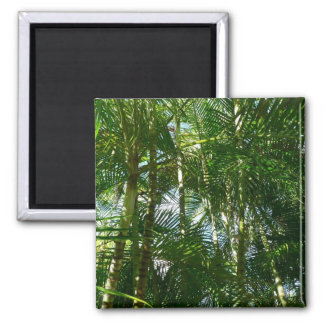 Forest of Palm Trees Tropical Green 2 Inch Square Magnet