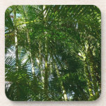 Forest of Palm Trees Tropical Green Beverage Coaster