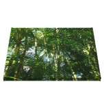 Forest of Palm Trees Tropical Green Stretched Canvas Prints