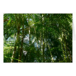 Forest of Palm Trees Tropical Green Card