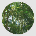 Forest of Palm Trees Tropical Green Classic Round Sticker