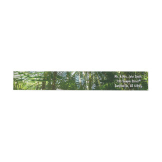 Forest of Palm Trees Wrap Around Label