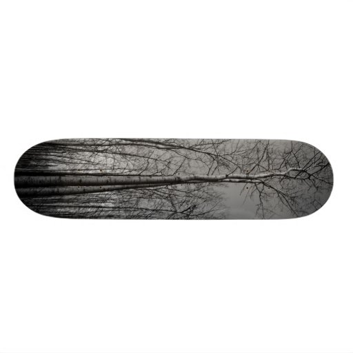 Forest of Trees Skateboard Deck