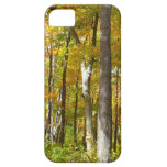 Forest of Yellow Leaves Autumn Nature Photography iPhone SE/5/5s Case