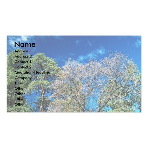 Forest on Mt. Laguana, Cleveland State park, Ohio, Business Cards