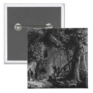 Forest Opening from 'Bresil, Columbie at 2 Inch Square Button