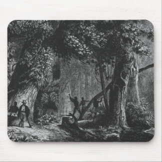 Forest Opening from 'Bresil, Columbie at Mouse Pad