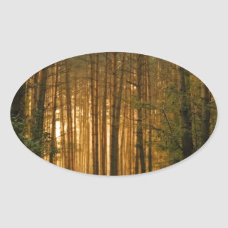 Forest Oval Sticker