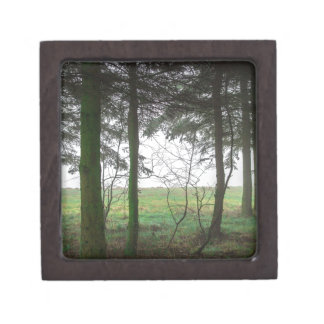 Forest overlooking clearing in the fog keepsake box