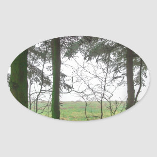 Forest overlooking clearing in the fog oval sticker