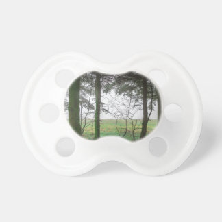 Forest overlooking clearing in the fog pacifier