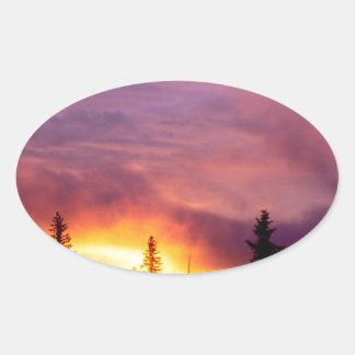 Forest Part Skies San Isabel Oval Sticker