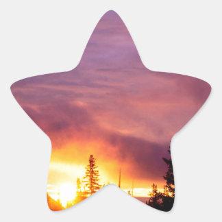 Forest Part Skies San Isabel Star Sticker