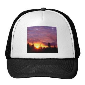 Forest Part Skies San Isabel Trucker Hat
