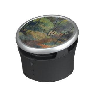 Forest Path, 1920 Bluetooth Speaker