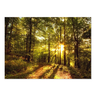 Forest Path - 2 Card