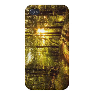 Forest Path - 2 iPhone 4/4S Cover