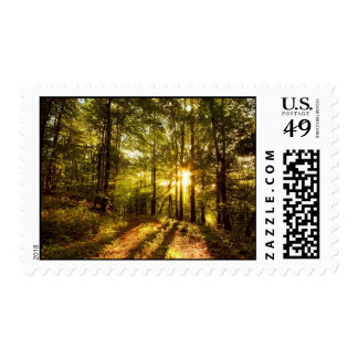 Forest Path - 2 Stamps