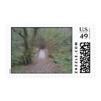 Forest Path art Postage
