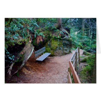Forest Path Bench Blank Card