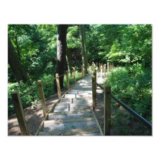 Forest Path Bible Verse Encouragement Card