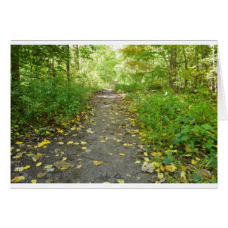 Forest Path Blank Note Greeting Card