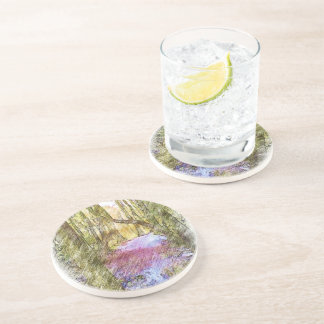 Forest Path Coasters