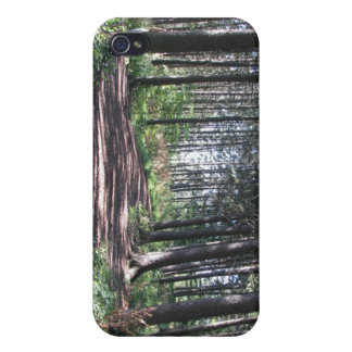 Forest Path Collection iPhone 4 Case