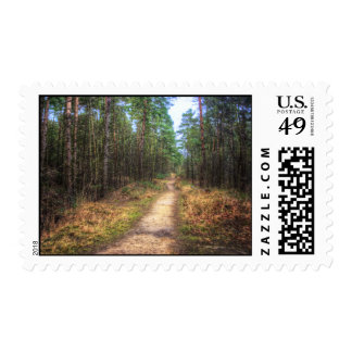 Forest Path HDR Stamp