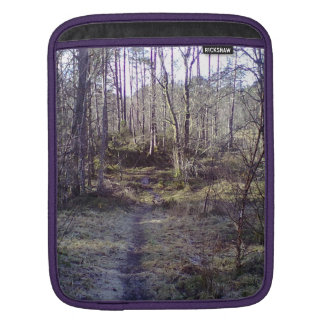 Forest path sleeve for iPads