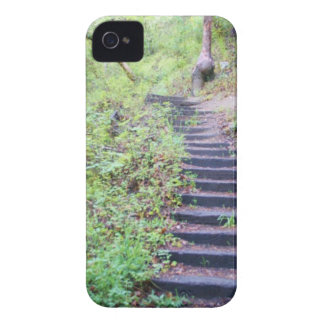 Forest path iPhone 4 covers