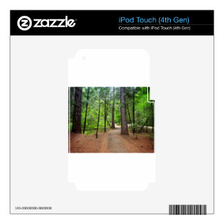 Forest Path iPod Touch 4G Skin