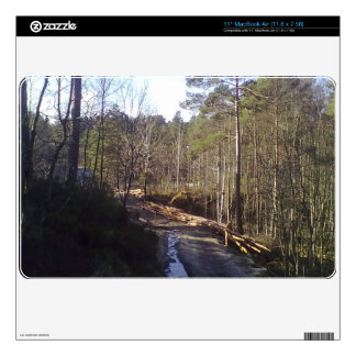 Forest Path MacBook Air Skin