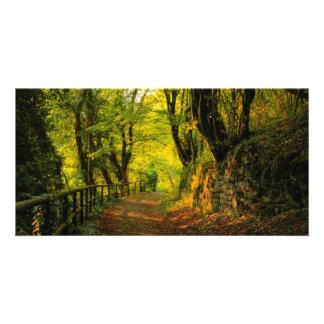 Forest Path Custom Photo Card