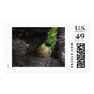 Forest Path Postage Stamps